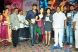 saradaga-ammaitho-audio-launch-4573d157