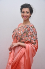 Hamsa Nandini Hot Stills at Legend Audio Launch 25CineFrames