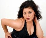 Roshitha Hot Spicy Photos Gallery
