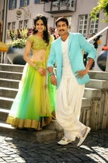Loukyam Movie New Stills Gopichand Rakul Preet Singh Traditional Dress