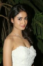 Tridha Choudhury Surya VS Surya Heroine HD Spicy Hot Photos Stills