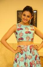 Rakul Preet Singh New Hot Cute Cartoon Dress Photoshoot HD Photos Stills