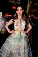 Actress Tamanna Bhatia HOT Photos at South IIFA Utsav Function Gallery Images Pics