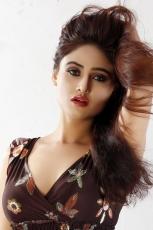 Sony Charishta Latest Hot Photo Shoot Spicy Stills ULTRA HD Photos in Blue Saree Gallery Images
