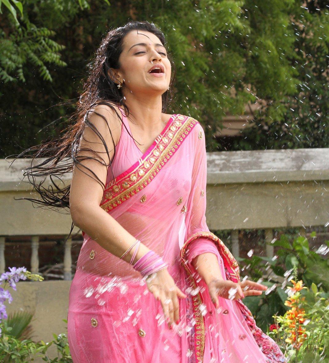 Actress Trisha Krishnan Wet Hot Ultra Hd Photos In Pink Saree Stills