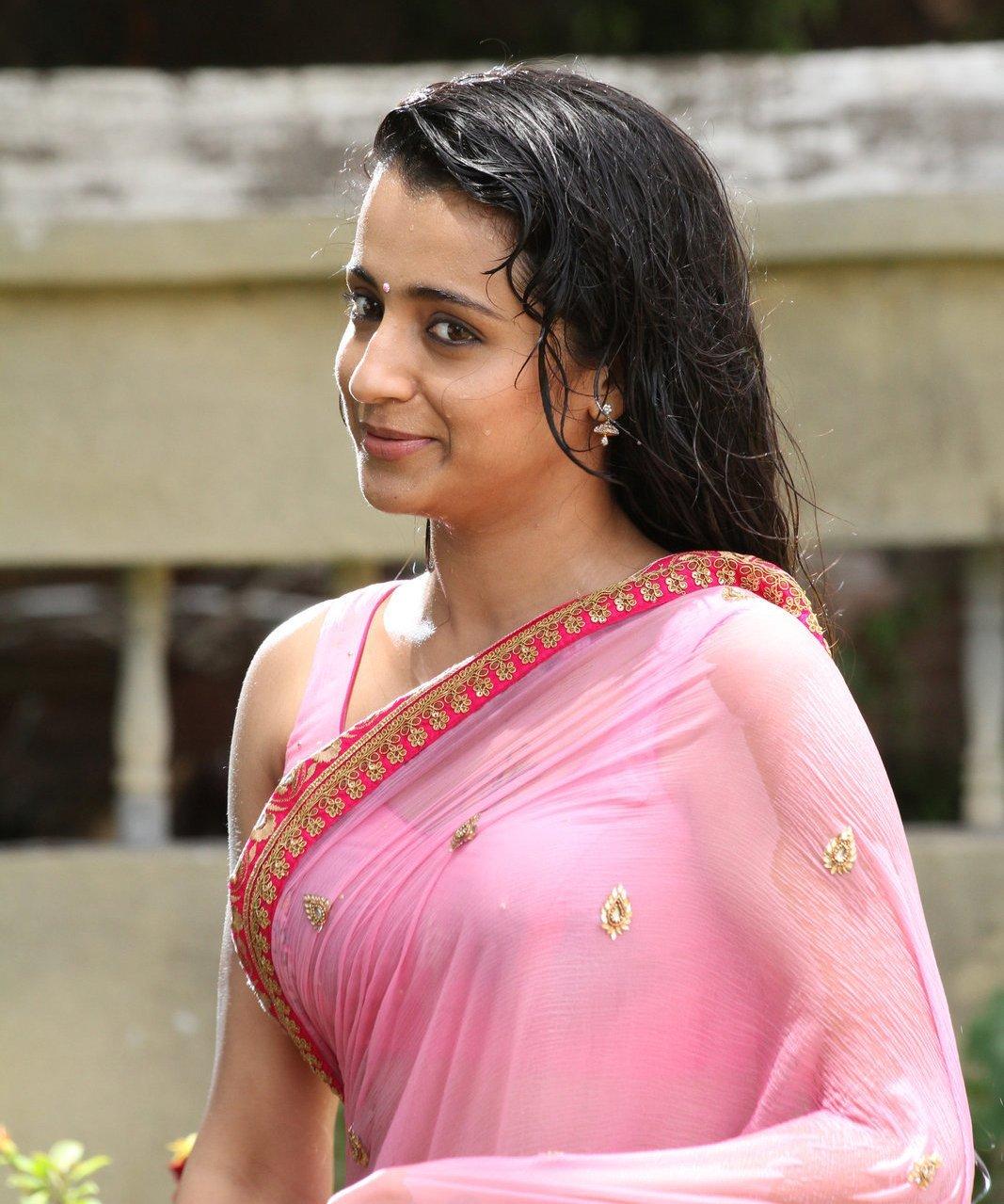 Hot Pics Of Trisha In Saree