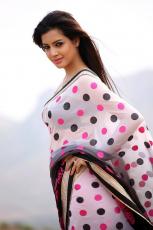 Diksha Panth New Latest HD Photos Jr NTR Bigg Boss Telugu Show Heroine Diksha Panth Photo Shoot Images
