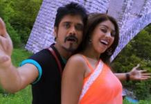 Bhai Movie Nemmadiga Song Trailer