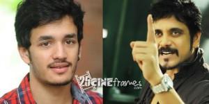 Nagarjuna Clarified Trivikram Akhil Movie Rumor