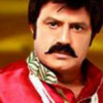 Balakrishna Legend's Vizag schedule wrapped up soon1
