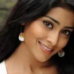 Shriya Saran in Pawan Kalyan Venkatesh Oh My God remake1