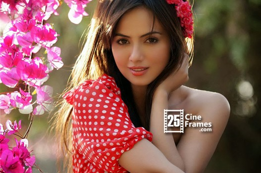 Sana khan denies exploitation charges on her