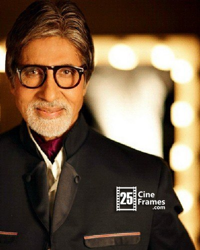Its Official Amitabh Is AP's Brand Ambassador