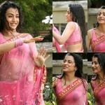Actress Trisha Krishnan Wet Hot HD Photos in Kalavathi Movie
