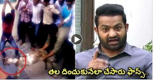 Jr Ntr Felt Ashamed of his Fans, Very Serious Warning to Fans