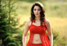 Tamannaah To Don The Same Role As Of Oopiri Movie in Its Bollywood Remake