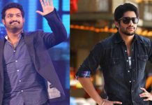 Naga Chaitanya And Jr. NTR in MultiStarrer