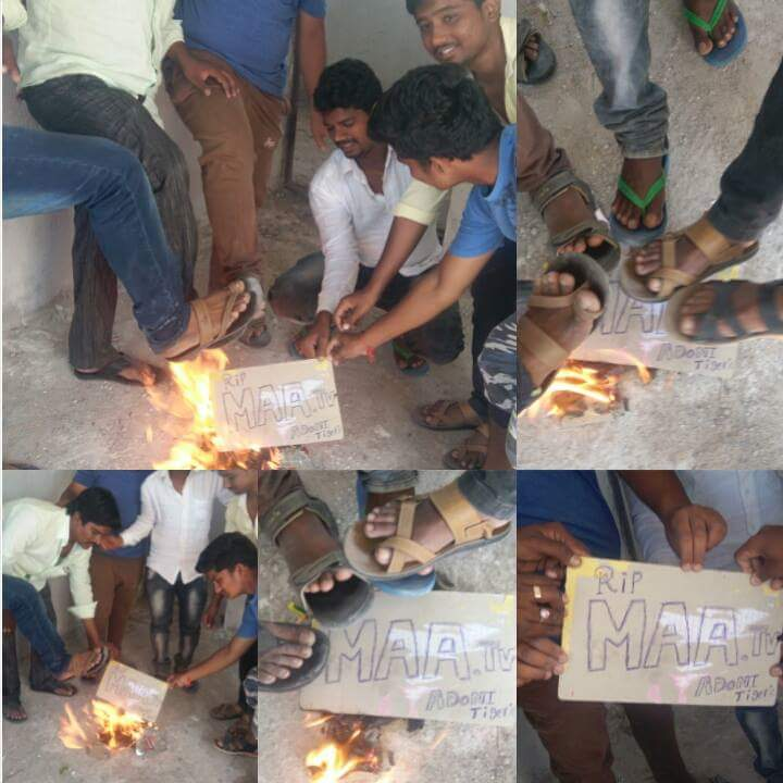 jr-ntr-fans-in-negative-campaign-against-maa-tv