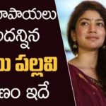 Actress Sai Pallavi refused a big offer, Why?