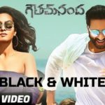 Black and White Song Full Video Song HD 1080P | Goutham Nanda Telugu Movie Gautham Nanda Video Songs | Gopichand, Hansika Motwani, Catherine Tresa | Thaman S