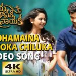 Andhamaina Seetakoka Chiluka Full Video Song HD 1080P | Jaya Janaki Naayaka Telugu Movie Jaya Janaki Nayaka Video Songs | Bellamkonda Sai Srinivas, Rakul Preeet Singh | Devi Sri Prasad