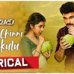 Chinni Chinni Chinukulu Full Video Song HD 1080P | Rakshasudu Telugu Movie Rakshasudu Video Songs | Bellamkonda Sreenivas, Anupama Parameswaran | Ghibran