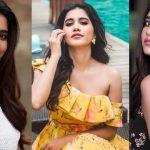 Nabha Natesh New Latest HD Photos | iSmart Shankar, Nannu Dochukunduvate Movie Heroine Nabha Natesh Photo Shoot Images